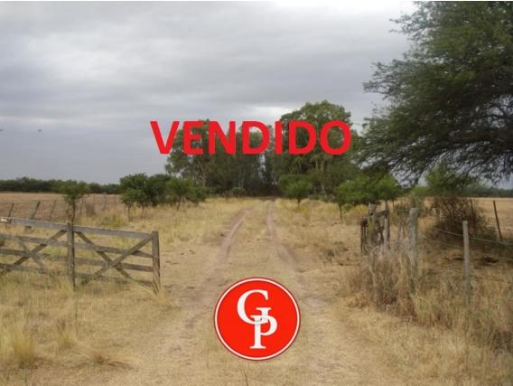 En Venta, 200 Has, En Guatrache, La Pampa.