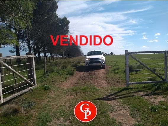 En Venta 250 Has Perú La Pampa.-