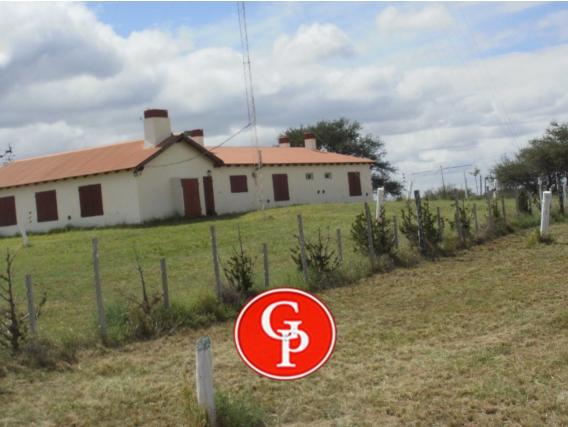 En Venta 7.050 Has, Bernasconi, La Pampa. -