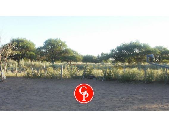 En Venta, 8.100 Has. Jaguel Del Monte - La Pampa -