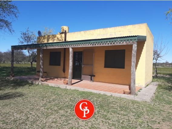 En Venta 840 Has, Doblas, La Pampa.-