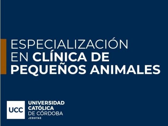 Especialización En Clínica De Pequeños Animales