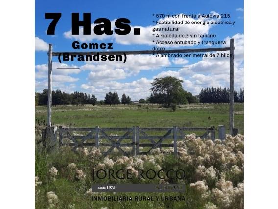 Espectaculares 7 Has. Sobre Autovia Gomez - Brandsen -