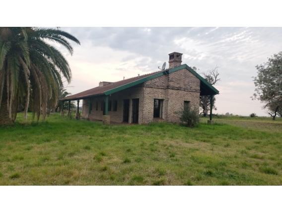Exelente Campo Agricola