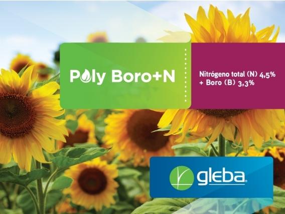 Fertilizante Poly Boro+N