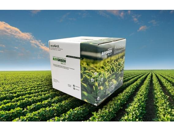 Fertilizante Ecofértil RAYGREEN Foliar