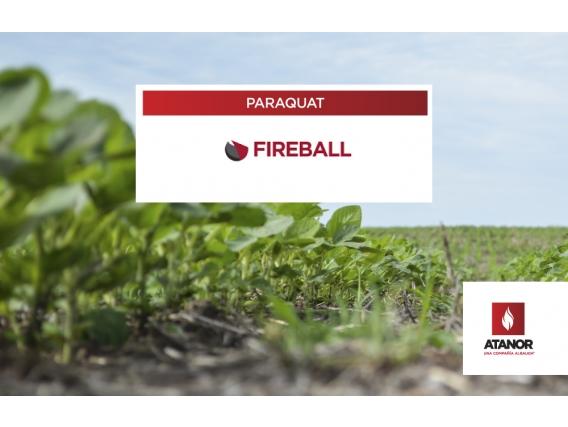 Herbicida Fireball - Paraquat