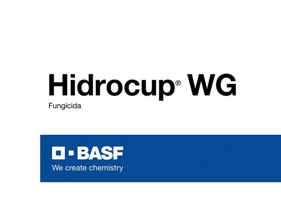 Fungicida Hidrocup® WG Hidróxido de cobre - BASF