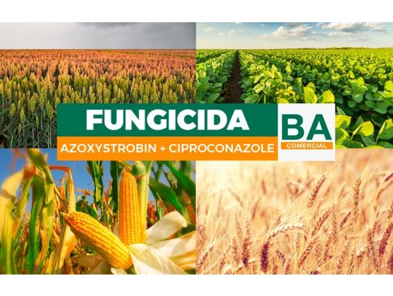 Fungicida Azoxistrobina + Cyproconazole