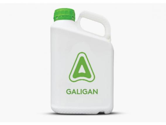 Herbicida Galigan Oxifluorfen - Adama