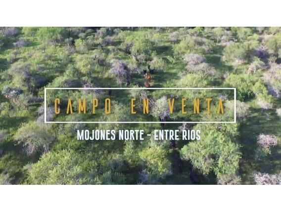 Campo De 89 Has Mojones Norte, Entre Ríos