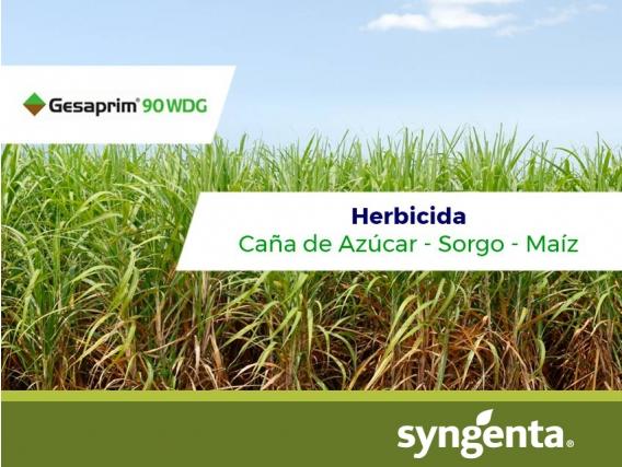 Herbicida Gesaprim ® 90 WDG