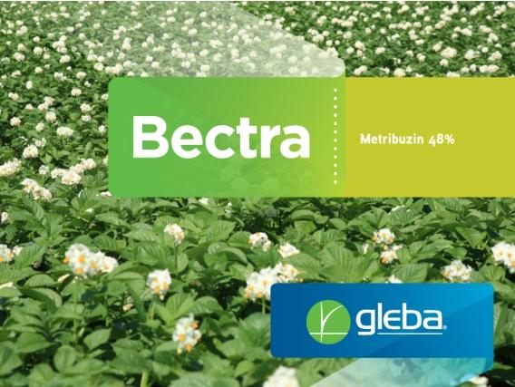Herbicida Bectra Metribuzin - Gleba