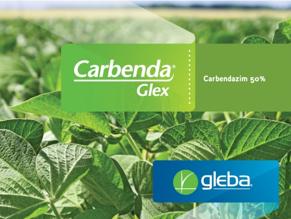 Fungicida Carbenda® Glex Carbendazim - Gleba