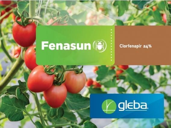 Insecticida Fenasun