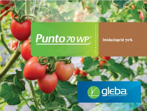 Insecticida Punto 70 WG®
