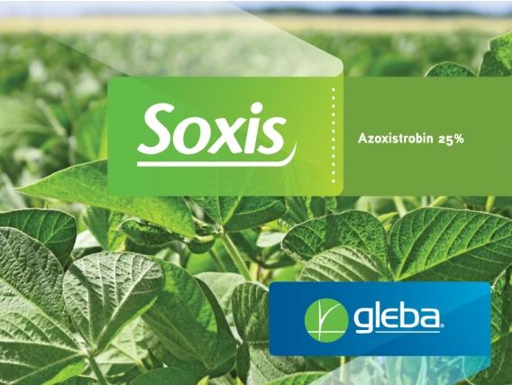 Fungicida Soxis® Azoxistrobina - Gleba