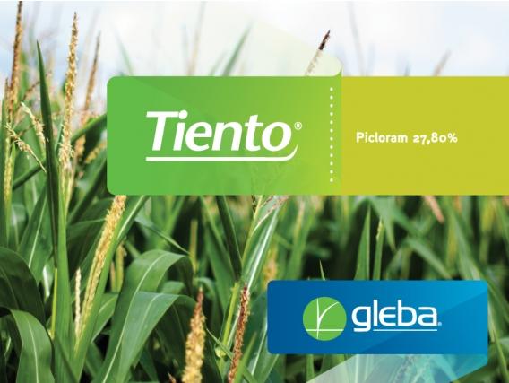 Herbicida Tiento® Picloram - Gleba