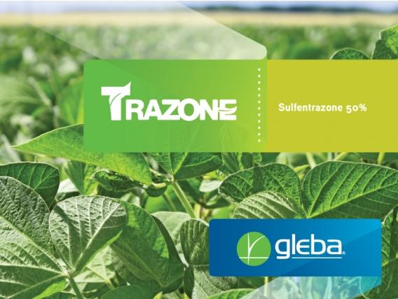 Herbicida Trazone