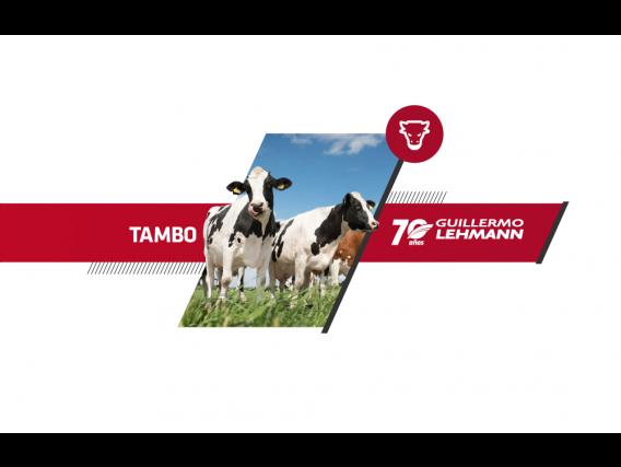 Hacienda Para Tambo