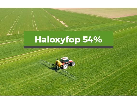 Herbicida Haloxifop 54%