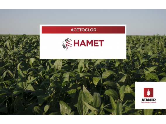 Herbicida Hamet - Acetoclor
