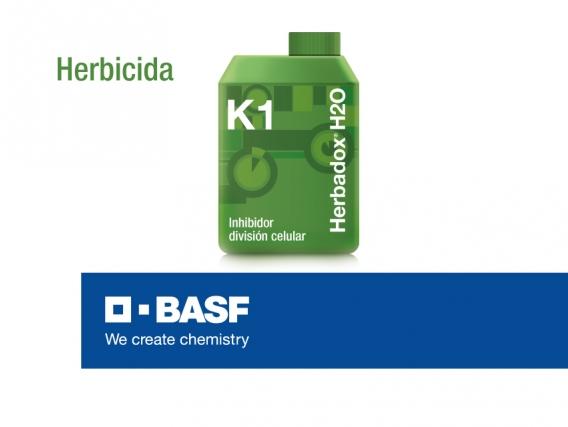 Herbicida Herbadox® H2O
