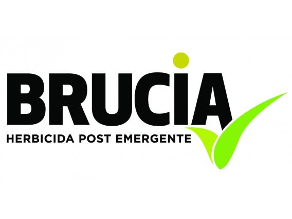 Herbicida Brucia Tolpyralate - SummitAgro