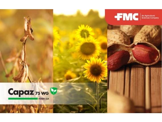 Herbicida Capaz® 75 WG Sulfentrazone - FMC