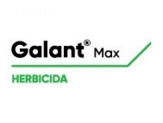 Herbicida Galant® Max