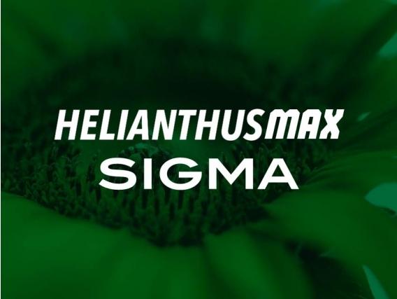 Herbicida Helianthus Max Sigma Imazapir - Sigma Agro