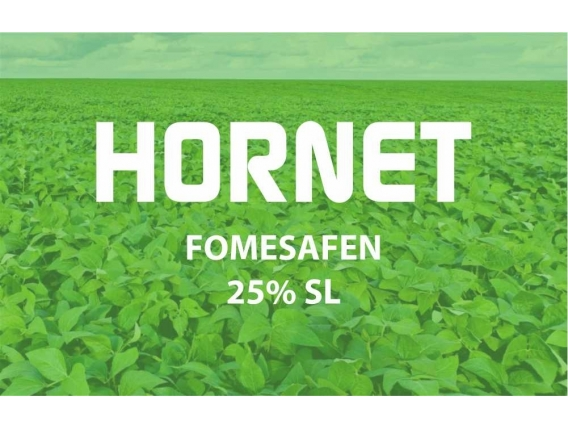 Herbicida Hornet Fomesafen - Philagro
