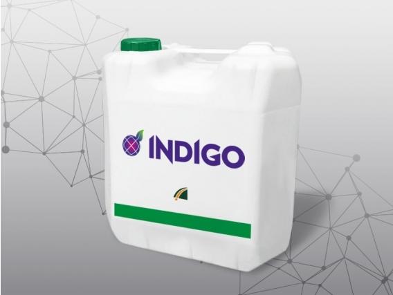 Herbicida Indigo Elite Imazetapir - Red Surcos