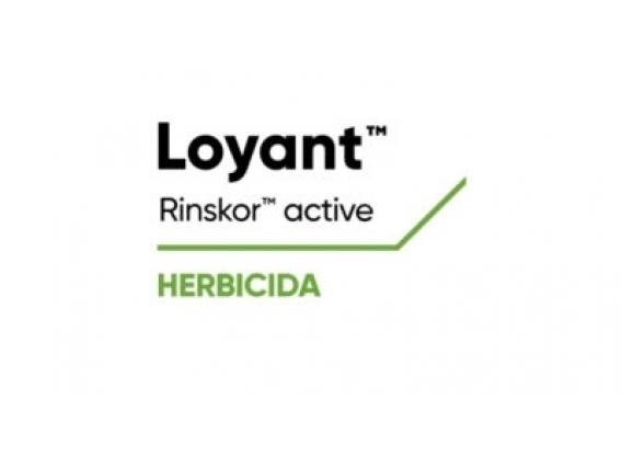 Herbicida Loyant®
