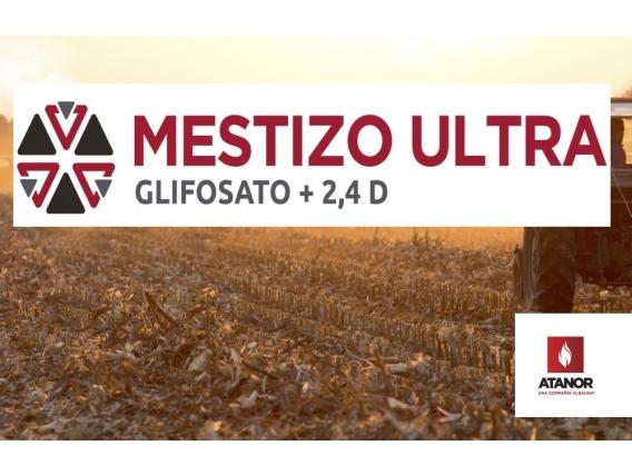 Herbicida Mestizo Ultra Glifosato + 2,4 D - Atanor