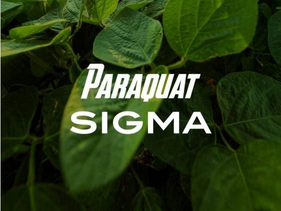 Herbicida Paraquat Sigma - Sigma Agro