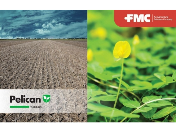 Herbicida Pelican Diflufenican - FMC