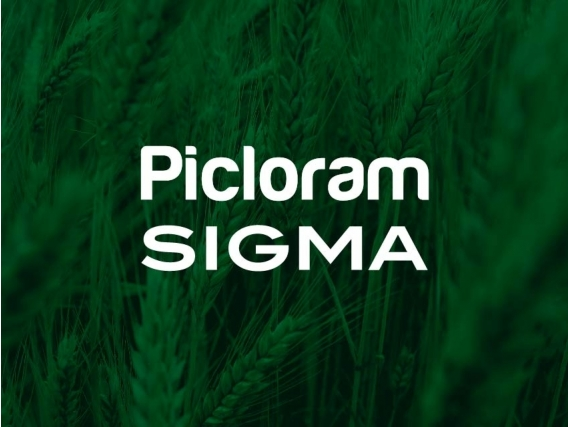 Herbicida Picloram Sigma - Sigma Agro