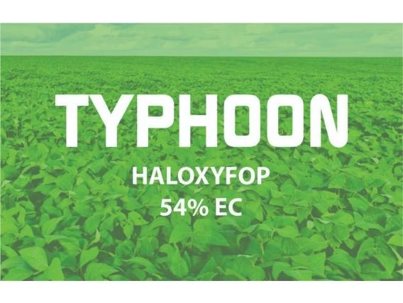 Herbicida Typhoon Haloxyfop P Metil - Philagro