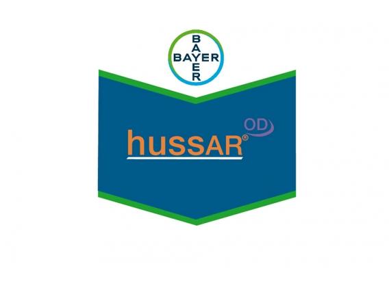 Herbicida Hussar® Iodosulfuron + Metsulfuron - Bayer