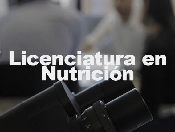 Licenciado en Nutrición