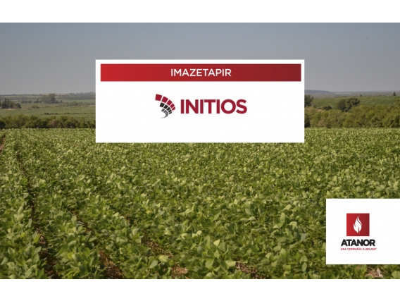 Herbicida Initios - Imazetapir