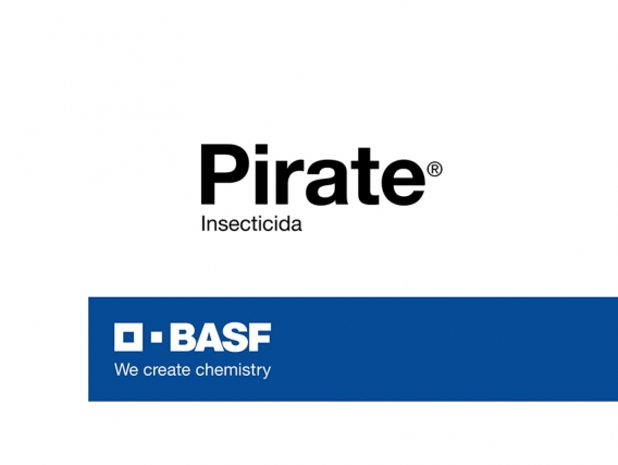Insecticida Pirate®