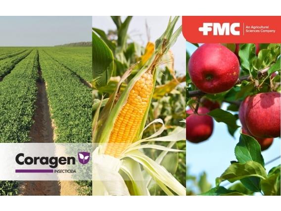 Insecticida Coragen® Clorantraniliprole - FMC