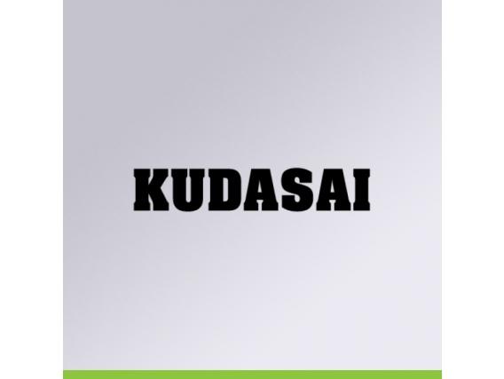 Insecticida SummitAgro Kudasai