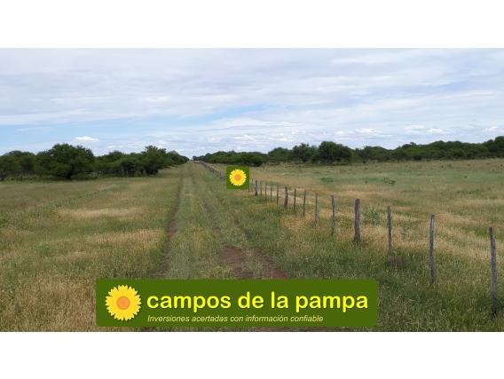 La Pampa - 1.250 Ha Caldenal Y Cultivo - Sociedad