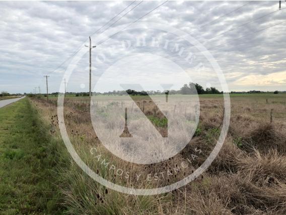 La Plata 223 Ha, Sobre Ruta, Agricultura Y Ganadería.