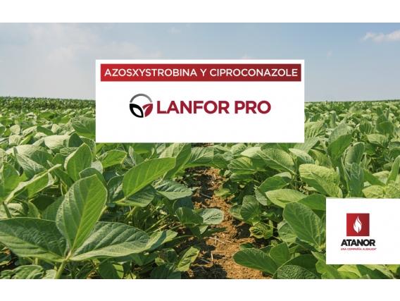 Fungicida Lanfor Pro - Atanor