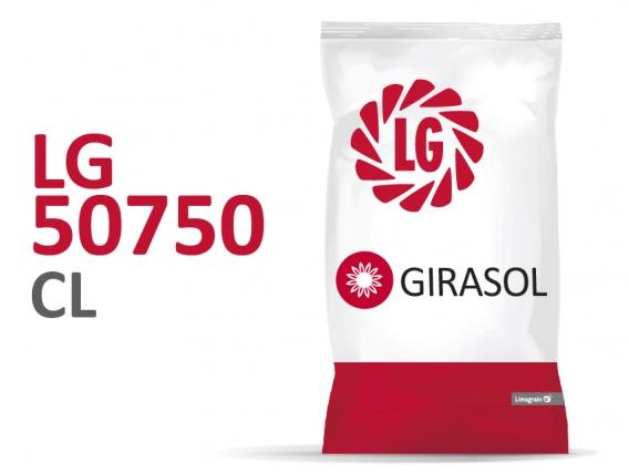 Girasol LG 50750 CL