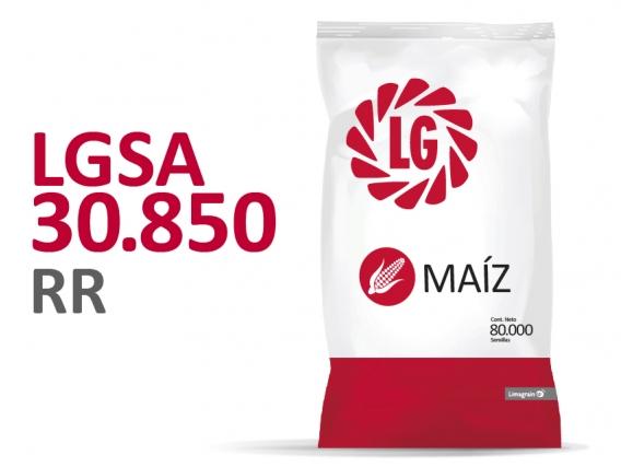 Maíz LGSA 30.850 RR2